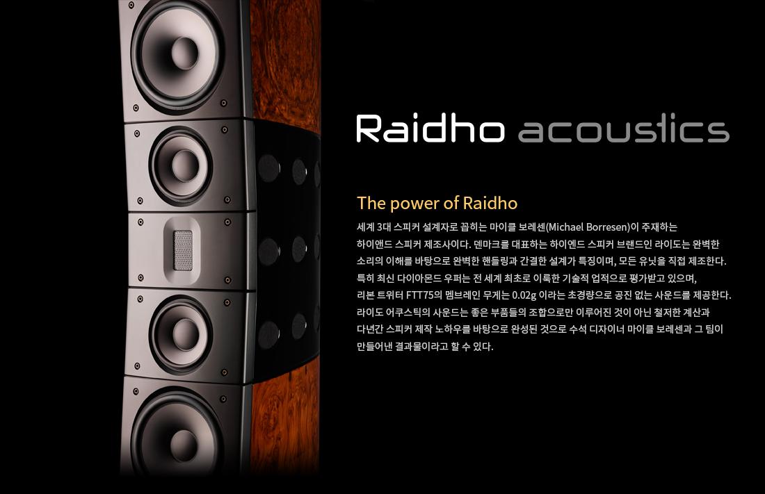 Raidhoacoustics_ori_01.jpg